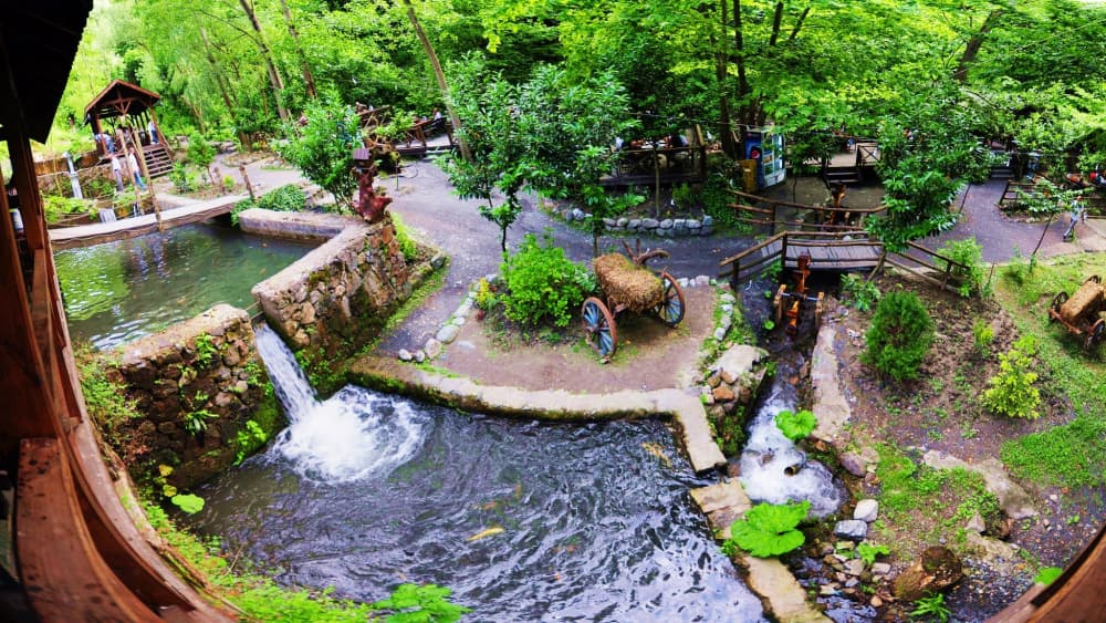 Daily Masukiye & Sapanca Lake & Zoo Tour